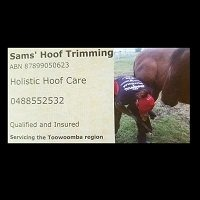 Sams Hoof Trimming and Training