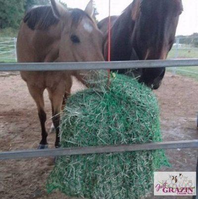 Slow Feed Hay Net