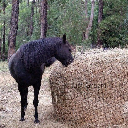 Just Grazin Large Round Bale Net